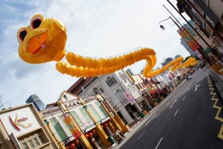 snake made of lanterns