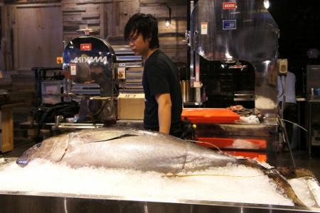 huge tuna