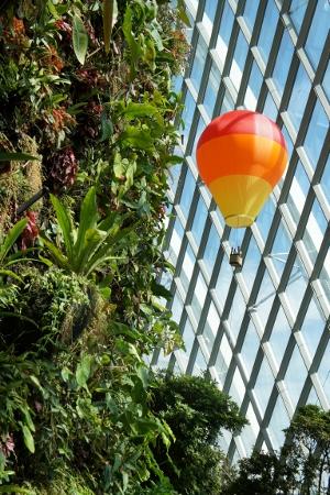 hot air balloon overhead