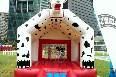 barnyard bouncy castle