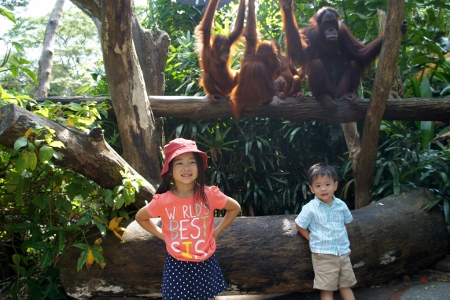 posing with the orang utans