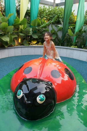 ladybird at toddler area