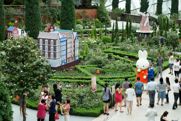 Miffy from above