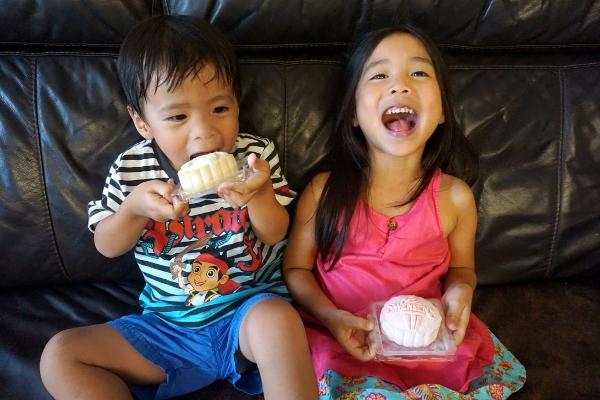 crazy for ice-cream mooncakes