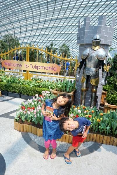 Tulipmania 2015