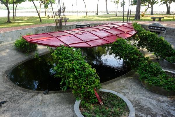 tortoise shelter