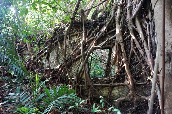 reminds me of Angkor Wat