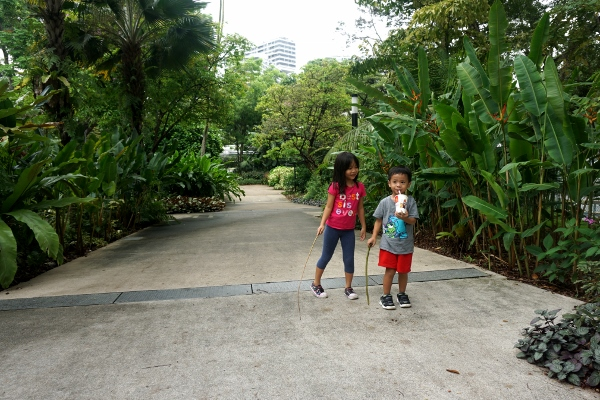 back at Hort Park